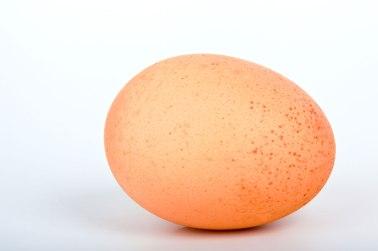 egg-871282749217q6v0